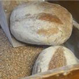 Kees Gutter bakt Noord-Hollands Molenbrood