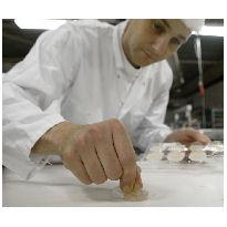 Verschillen in HACCP en Hygiënecode