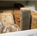 Grootbrood zet rendement onder druk