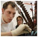 Frank Haasnoot vierde op World Chocolate Masters