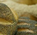 Westland verkoopt nieuw broodje