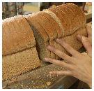 Half brood steeds populairder