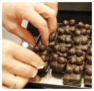 ZDS houdt cacao- en chocoladecursus
