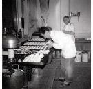 Historie Raamdonkse bakkers vastgelegd in boekvorm
