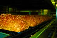Brood belangrijkste basisvoedsel Nederlander