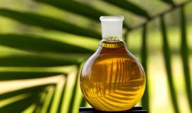 Duurzame( -Sustainable) olie gebruiken?