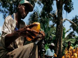 Callebaut en Biolands lanceren website