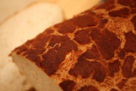 Giraffenbrood bij Sainsbury's