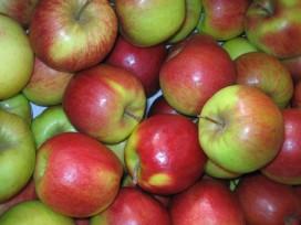 Appels en peren duurder