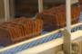 Nieuwe Fuji verpakkingslijn voor Van Dijk Banket
