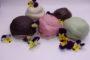 Bakkerij Royal lanceert Bossche Bol in vijf nieuwe smaken