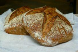 Biostadsbakker Broodt brengt lokaal Hoevebroodt