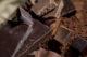 Vraag naar duurzame cacao blijft stijgen