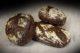 Bakels introduceert Zweedse broodmix